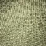 x10-olive-green